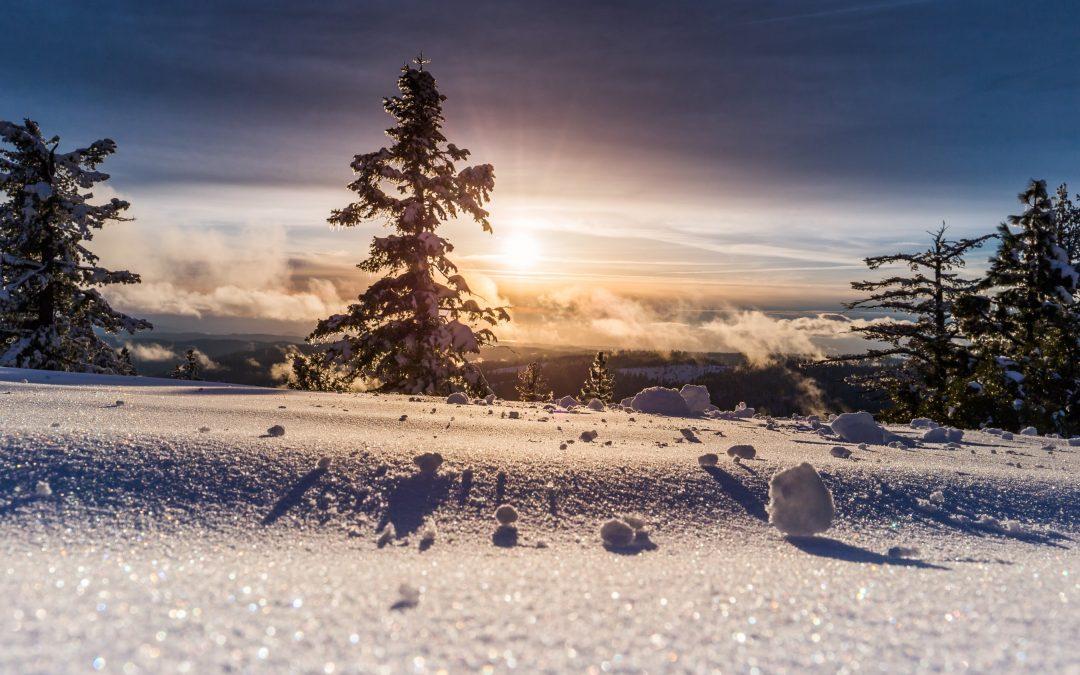 Vinterferietilbud